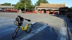 网络自行车在故宫 库存图片