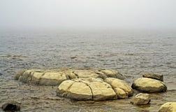 罕见的化石3 50亿岁Thrombolites 免版税库存图片