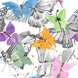 罕见的在水彩样式的蝴蝶野生昆虫 无缝的背景模式 织品墙纸印刷品纹理 库存图片