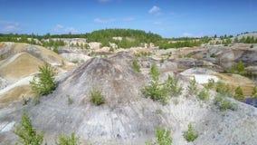 罕见的小树和灌木在粘土矿坑倾斜上面 影视素材