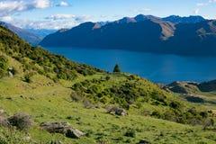 罗伊峰顶,新西兰 免版税库存图片