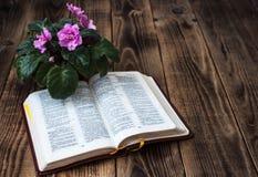 紫罗兰和圣经在木背景 图库摄影