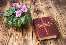 紫罗兰和圣经在木背景 免版税图库摄影