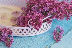 紫罗兰色丁香,软的焦点背景花束在紫罗兰色盘子的 库存图片