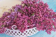 紫罗兰色丁香,软的焦点背景花束在紫罗兰色盘子的 免版税库存图片