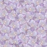 紫罗兰色兰花植物兰花花无缝的样式纹理 图库摄影