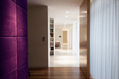 紫罗兰色墙壁 免版税库存图片