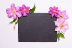 紫罗兰色夏天铁线莲属开花和在灰色t的空的板岩板 库存图片