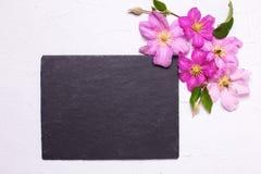 紫罗兰色夏天铁线莲属开花和空的板岩板 库存图片