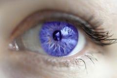 紫罗兰色眼睛颜色 免版税库存照片