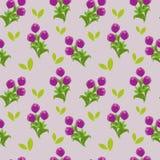 紫罗兰色郁金香 库存照片