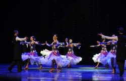 紫罗兰色以色列民间舞蹈这奥地利的世界舞蹈 免版税库存照片