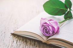 紫罗兰色紫色玫瑰花和被打开的书在木背景 图库摄影