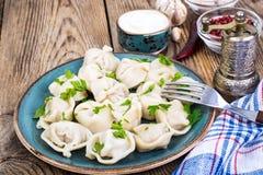 罗宋汤特写镜头烹调俄语汤 自创饺子充塞了肉 图库摄影