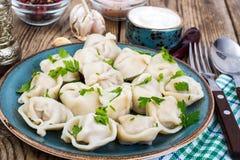 罗宋汤特写镜头烹调俄语汤 自创饺子充塞了肉 库存图片