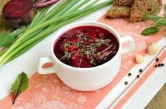 罗宋汤用在白色碗的莳萝 库存照片