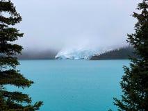 罗布森山冰川 免版税库存照片