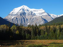 罗布森山,加拿大 库存图片