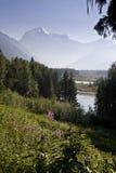 罗布森山,加拿大 免版税库存图片