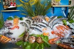 罗希姆诺,希腊- 2017年7月07日:鲜鱼静物画在餐馆前面的 免版税库存图片