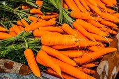 罗得岛市场红萝卜 库存照片