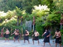 罗托路亚,新西兰- 2014年12月-毛利人战士执行哈加舞蹈 免版税库存照片