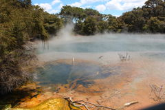 罗托路亚,火山的湖 免版税库存照片