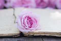 罗斯和一本古色古香的书 免版税图库摄影
