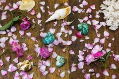 罗斯和巧克力精炼机壳,珊瑚形成在桌面背景中 免版税图库摄影