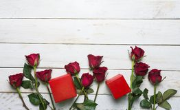 罗斯和红色礼物盒 免版税图库摄影