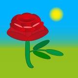 罗斯在绿色的花图画 免版税库存照片