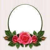 罗斯开花构成和卵形框架 免版税库存照片