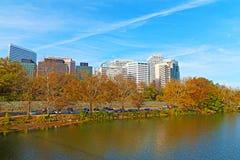 罗斯格风景地平线和波托马克河在秋天开户 库存图片