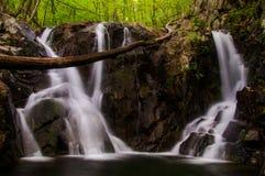 罗斯河在Shenandoah国家公园下跌,看见在春天期间 免版税图库摄影