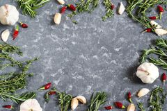 罗斯玛丽、麝香草、大蒜和辣椒在灰色背景 免版税库存图片