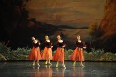罗斯球芭蕾天鹅湖 库存图片