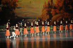 罗斯球芭蕾天鹅湖 免版税库存图片
