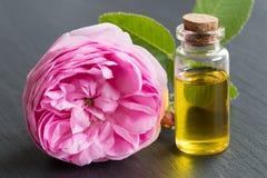 罗斯精油:一个瓶与玫瑰花的油 库存图片