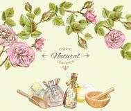 罗斯自然化妆圆的框架 为化妆用品美容院,自然和有机产品设计 免版税库存图片