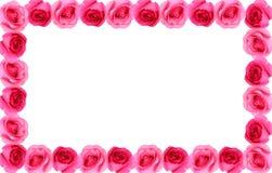 罗斯花框架背景 库存照片