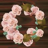 罗斯花花圈传染媒介 精美桃红色花卉圆的框架 情人节卡片 黑暗的木纹理背景 免版税库存图片