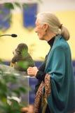 罗斯蒙特, PA - 9月15日:博士 珍・古道尔在艾格尼丝艾文学校在罗斯蒙特讲话2015年9月15日 库存照片