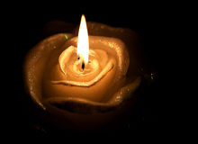 罗斯蜡烛 免版税库存照片