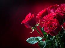 罗斯 红色玫瑰 英国兰开斯特家族族徽花束 在花岗岩背景的几朵玫瑰 情人节,婚礼之日背景 图库摄影