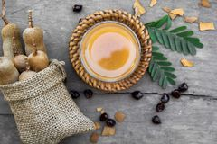 罗望子树和罗望子树汁液用蜂蜜 库存图片