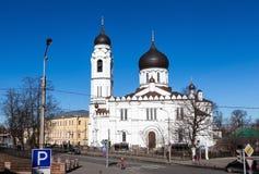 罗蒙诺索夫,圣迈克尔天使 免版税库存图片