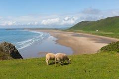 罗西里海滩Gower半岛南威尔士一最佳的海滩在英国 免版税库存照片