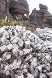 罗赖马山水晶 图库摄影