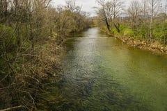 罗阿诺克河的春天图- 2 免版税库存照片