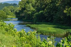 罗阿诺克河的清早视图 免版税库存照片